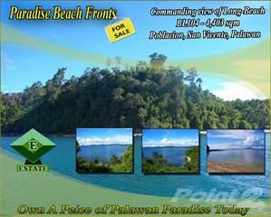 Land for sale in Poblacion, San Vicente, Palawan