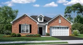 Single Family for sale in 2171 Azure Lane, Algonquin, IL, 60102