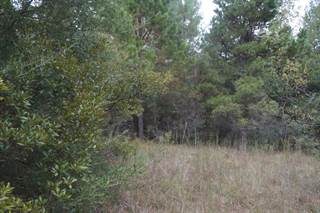 Land for sale in 00 Barnes Magee Rd., Oak Vale, MS, 39656