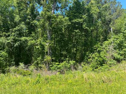 Lots And Land for sale in 0 Street 0 STREET, Cusseta, GA, 31805