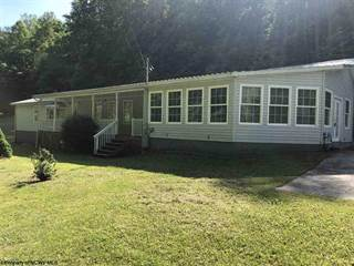 Single Family for sale in 1183 Tunnel Fork, Gassaway, WV, 26624