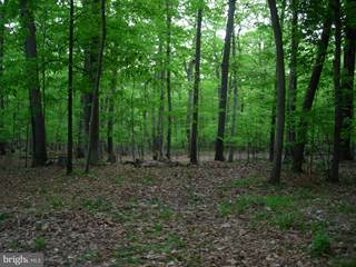 Land for sale in ASHBURY CHURCH RD, Purcellville, VA, 20132