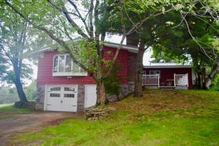 Single Family for sale in 67 Wooliver Road, Orwell, NY, 13144