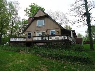 Single Family for sale in 3441 Hammond Lane, Centralia, IL, 62801