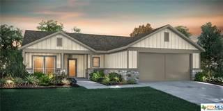 Single Family for sale in 3009 Rocky Ridge Loop, Canyon Lake, TX, 78133