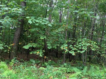 Lots And Land for sale in Lot 160 South Fork Run, Claysburg, PA, 16625