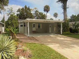 Propiedad residencial en venta en 259 Osprey Lane, Flagler Beach, FL, 32136