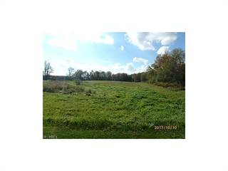 Land for sale in 0 Stanhope Kelloggsville Rd, Andover, OH, 44003
