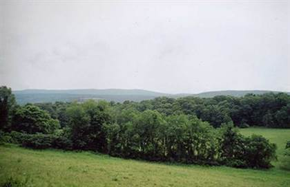 Farm And Agriculture for sale in BATE RD, Claverack, NY, 12513