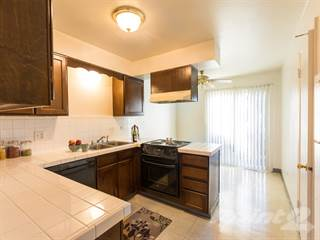 Apartment for rent in Courtyard Apartments, Lakewood, CO, 80214