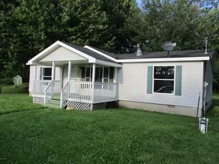 Single Family for sale in 5336 S Eden Lake Road, Custer, MI, 49405