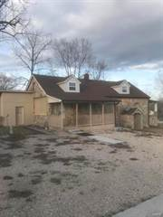 Single Family for sale in 9103 State Highway 99, Birch Tree, MO, 65438