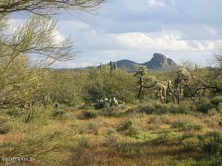 Land for sale in E Park Link Drive 2, Tucson, AZ, 85739
