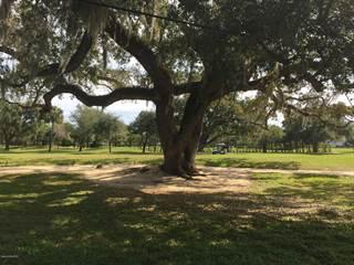 Land for sale in 3260 Buckinghammock Trail, Vero Beach, FL, 32960