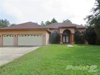 Residential Property for sale in 5983 N. Lamp Post Drive, Pine Ridge, FL, 34465