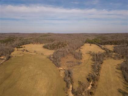 Farm And Agriculture for sale in 0 Carter county road 111, Fremont, MO, 63941