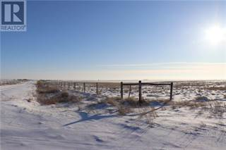 Farm And Agriculture for sale in Off Township Road 120, Rural Cypress County, Alberta