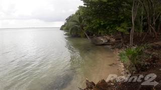 Land for sale in 38 acres with 400 feet of white sandy beach just north of Corozal Town, northern Belize, Consejo Area, Corozal District