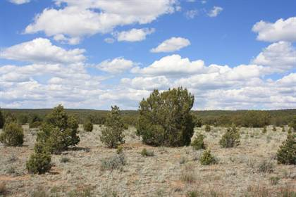 Lots And Land for sale in 450 Pine Meadows Unit 4, Pinehill, NM, 87357