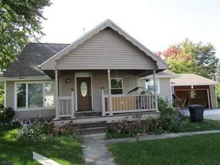 Single Family for sale in 81299 Cole, Memphis, MI, 48041