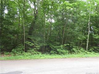 Land for sale in 0 Windtree Street, Torrington, CT, 06790