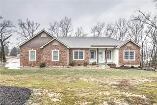 Single Family for sale in 11633 Gamel Cemetery Road, Festus, MO, 63028