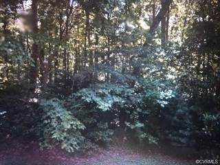 Land for sale in 12581  Brook Ln, Chester, VA, 23831