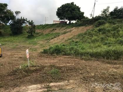 Lots And Land for sale in CALVACHE, SOLARES DE 1,494 y 1,416 METROS, Rincon, PR, 00677