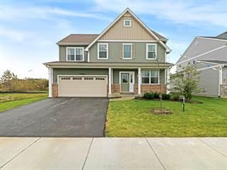 Single Family for sale in 13613 Palmetto Drive, Plainfield, IL, 60544