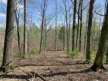 Lots And Land for sale in Old Trace Rd. 0 S. Old Trace Rd., Tompkinsville, KY, 42167