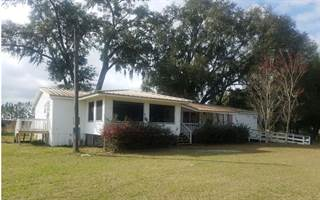 Residential Property for sale in 226 SW CARDINALE NEST GLN., Lake City, FL, 32024