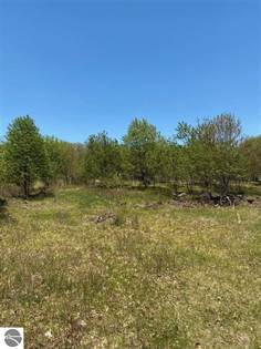 Lots And Land for sale in 0 Baroda Drive, Mulliken, MI, 48861