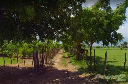 Lots And Land for sale in Land is located next to the beautiful Macao Beach, Bavaro, La Altagracia