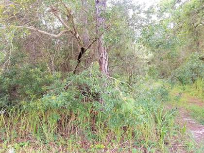 Lots And Land for sale in 224 PHEASANT RD, Satsuma, FL, 32189