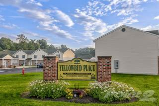 Apartment for rent in Yellowbud Place - 3 Bedroom Unit, WV, 26836