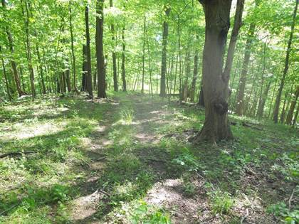 Lots And Land for sale in TBD Middle Creek Rd, Triadelphia, WV, 26059