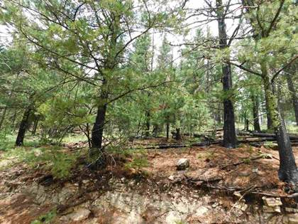 Lots And Land for sale in Bushwackers Gulley, Cloudcroft, NM, 88317