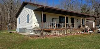 Single Family for sale in 145 Iron Furnace Road, Elizabethtown, IL, 62931