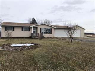 Single Family for sale in 3980 N STATE Road, Greater New Haven, MI, 48867