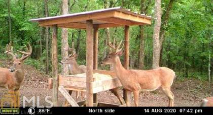 Lots And Land for sale in 0 Thaxton Rd, Butler, GA, 31006