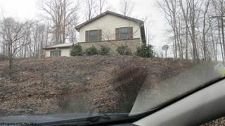 Single Family for sale in 112 Edgewood Lane, Belington, WV, 26250