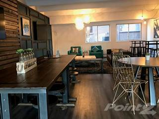 Apartment for rent in 1140 & 1160 S Bellaire - One Bedroom Renovated, Denver, CO, 80246
