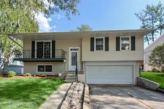 Single Family for sale in 425 White Pine Road, Buffalo Grove, IL, 60089