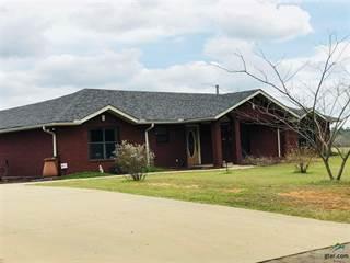 Single Family for sale in 343 SLASH PINE RD., Big Sandy, TX, 75755