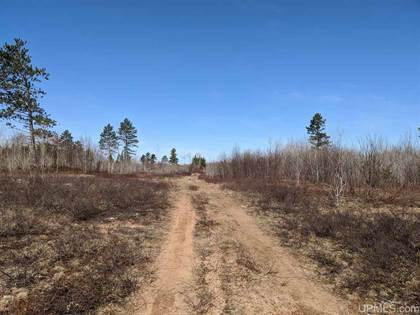 Lots And Land for sale in TBD 3 Off Little Bull Rd, Crystal Falls, MI, 49920