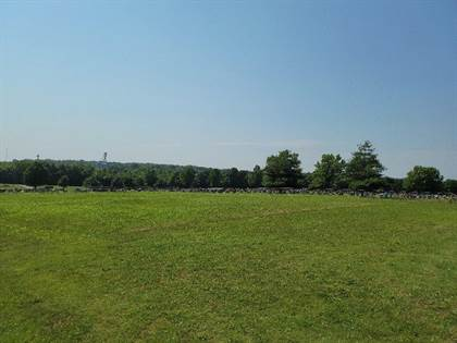 Lots And Land for sale in 000 Orchard Street, Stockton, MO, 65785