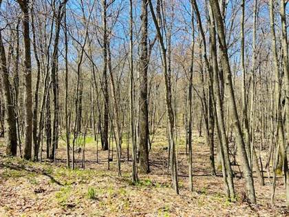 Lots And Land for sale in End Brownstone 516/146, Milford, PA, 18337