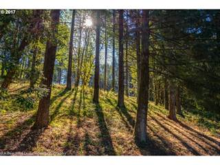 Land for sale in 1423 S KYLE PL, Stafford, OR, 97068