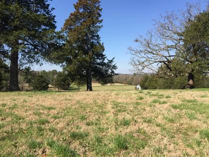 Lots And Land for sale in Off Elm St, Waldron, AR, 72958