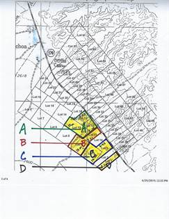 Lots And Land for sale in 0000 W Hwy 170, Presidio, TX, 79846